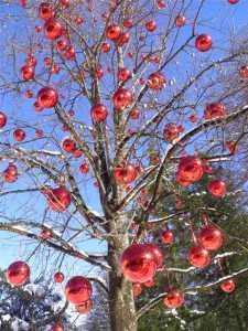 K640_tree in 2